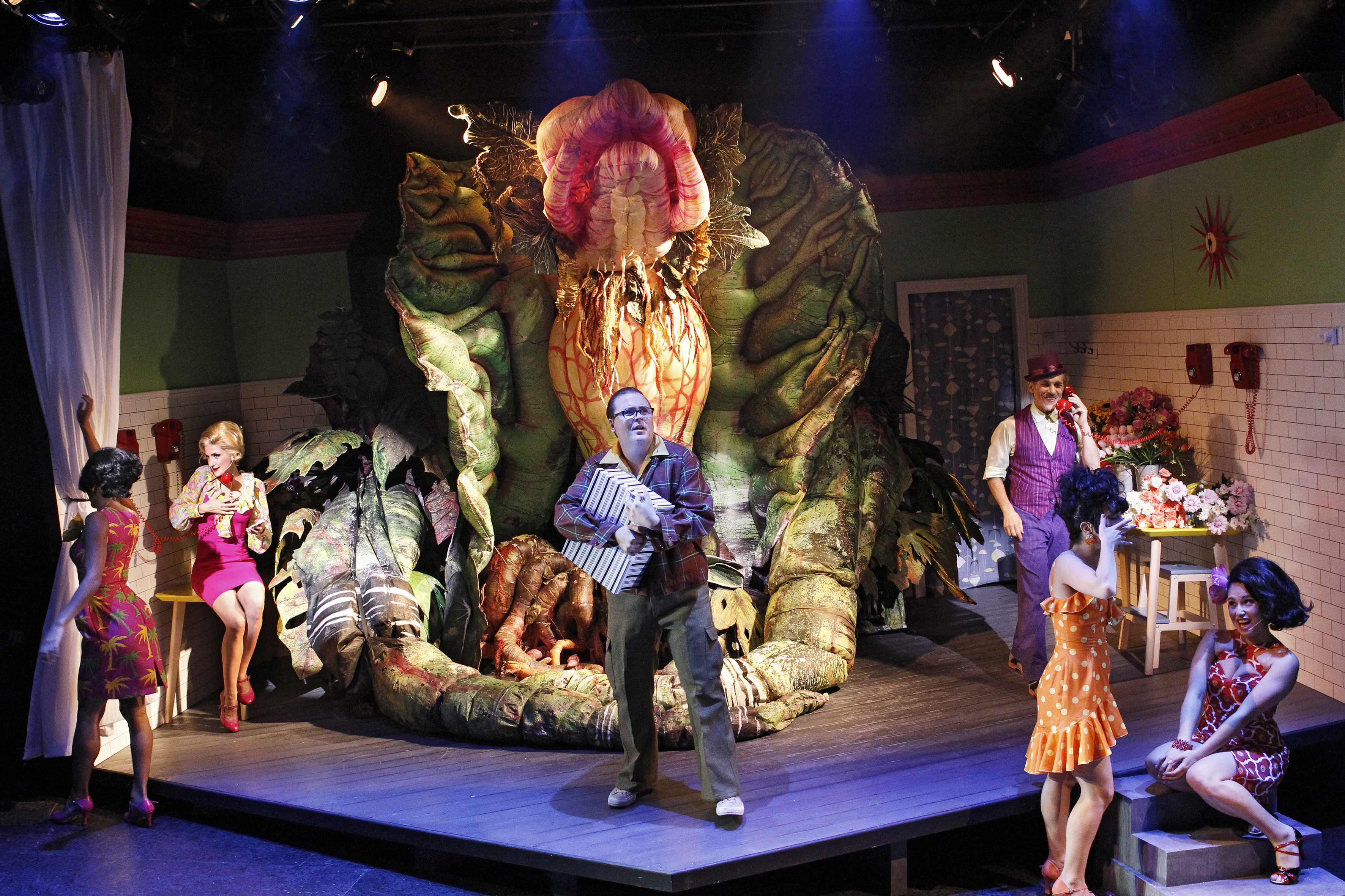 LITTLE SHOP OF HORRORS photo Jeff Busby_1486