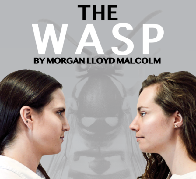 The+Wasp+Poster